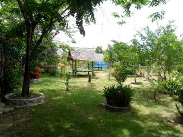 wiki bang khun thien museum