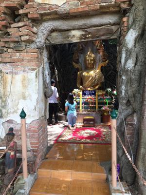 Praying at the Buddha statue